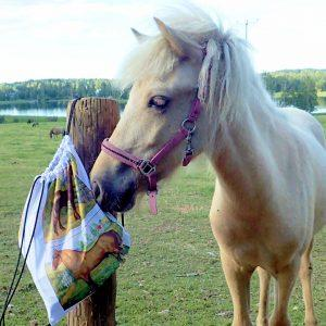 Hevosreppu_tallilla_taito_shop